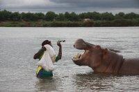 hippo feeding