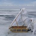 Seal watching on Lake Baikal