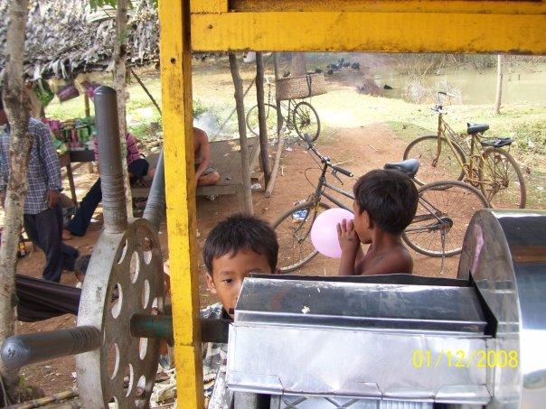 Kids Sugar Cane Stand