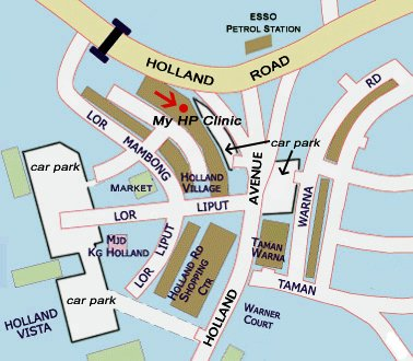 holland village map