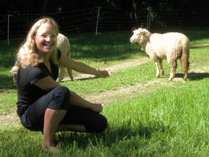 Auf Schafjagd