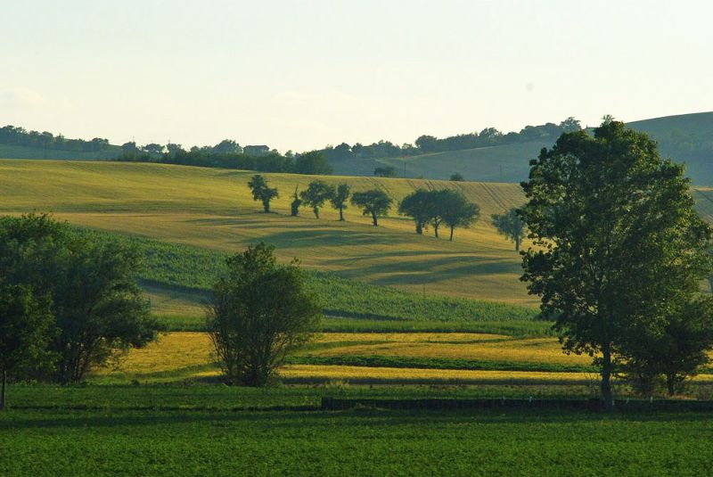 No, it is not Toscana, but.... fabulous Marche :-) - Marche