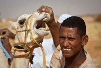 camel herder, Sudan