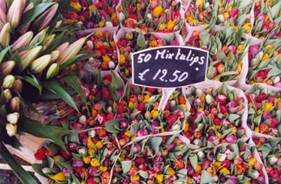 Tulips for sale in Amsterdam