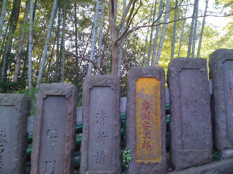 Temple Fence