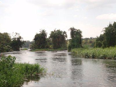 The Victoria Nile