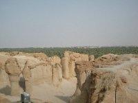 Al-Hasa Oasis