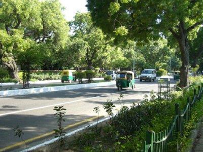 delhi-green-streets.jpg