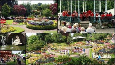 Shrewsbury Flower Show8