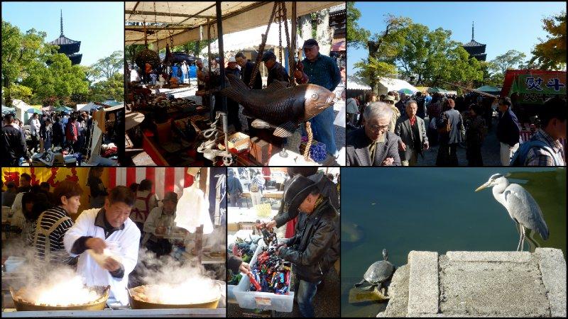 large_6Kyoto_November_2010.jpg