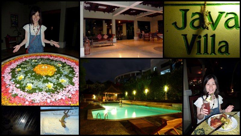 large_Bali_Holiday.jpg