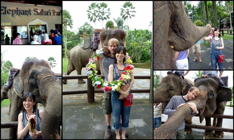 large_Bali_Holiday4.jpg