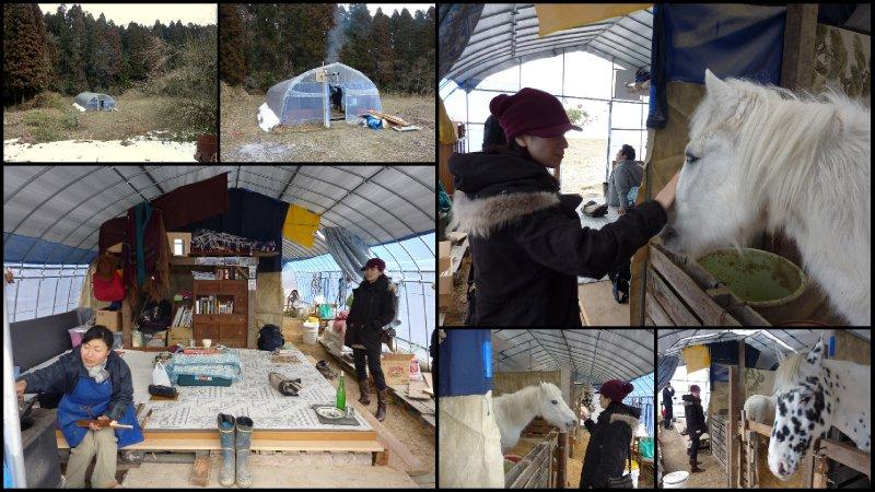 large_February_S..k_20117.jpg