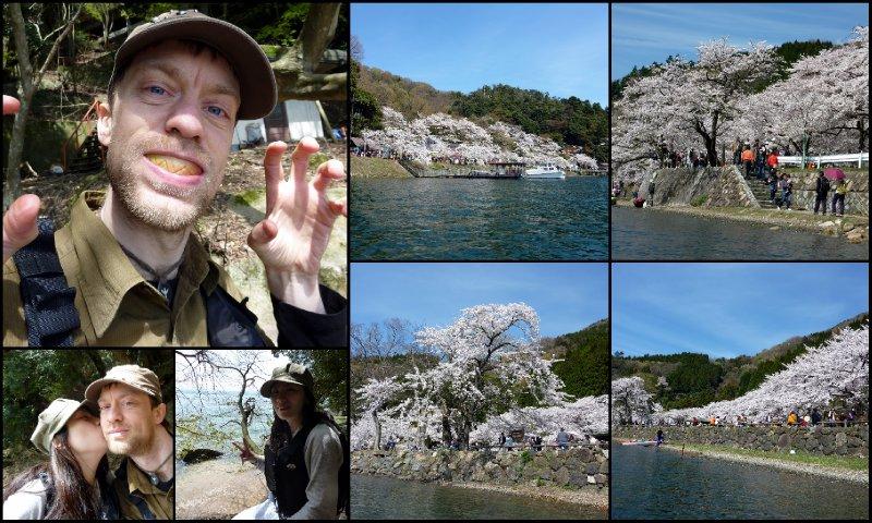 large_Hanami_-_K..Biwako1.jpg