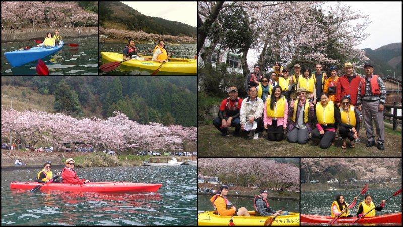 large_Hanami_20121.jpg