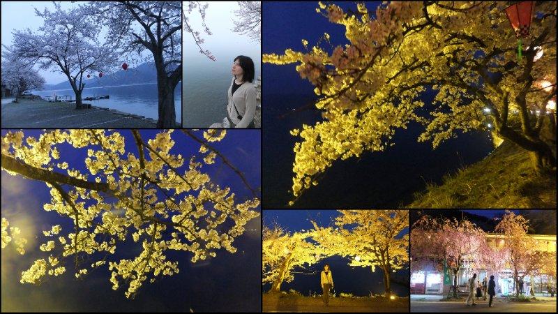 large_Hanami_20122.jpg
