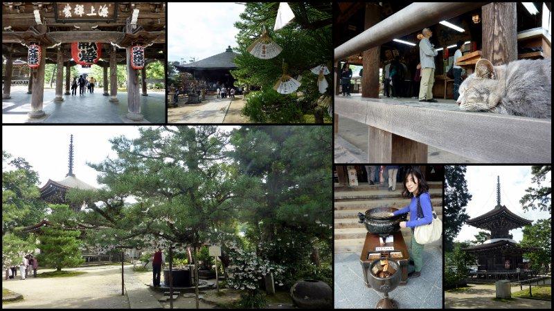 large_Ichi_Nen_K..i_Trip5.jpg