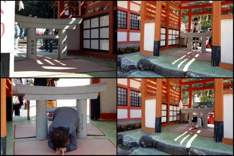 large_Inuyama8.jpg