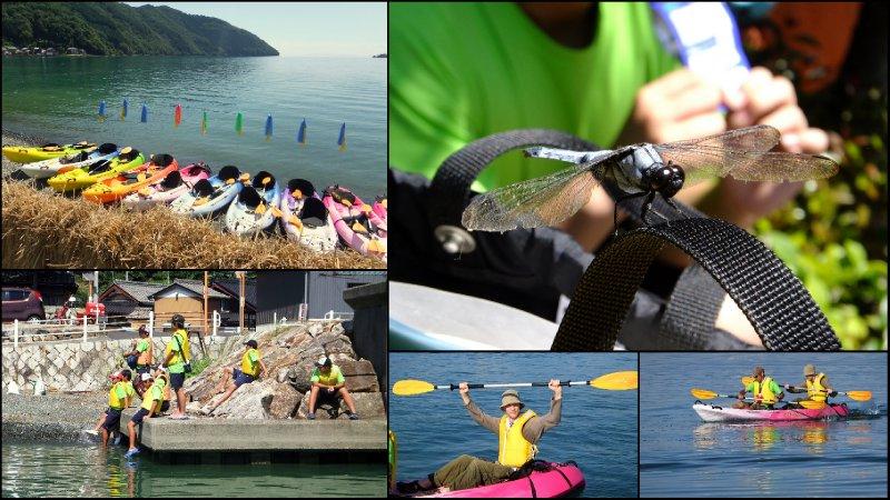 large_Kayak_Trip_20114.jpg