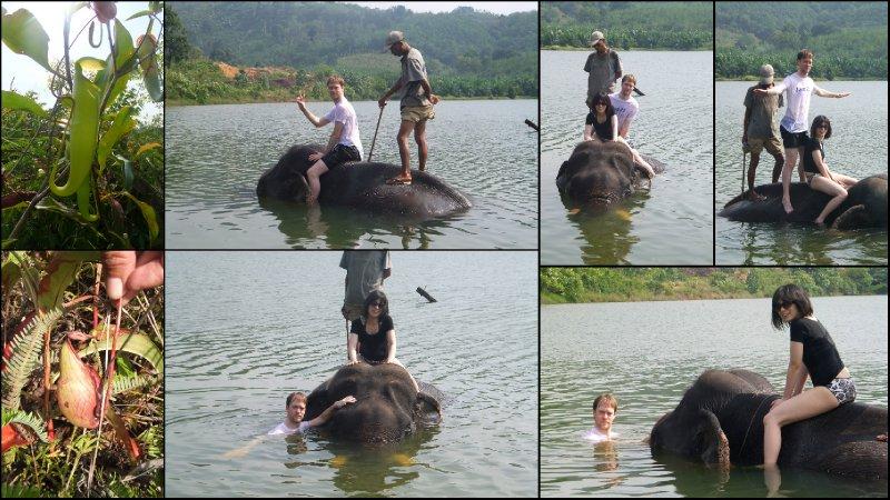 large_Khao_Lak__Thailand3.jpg