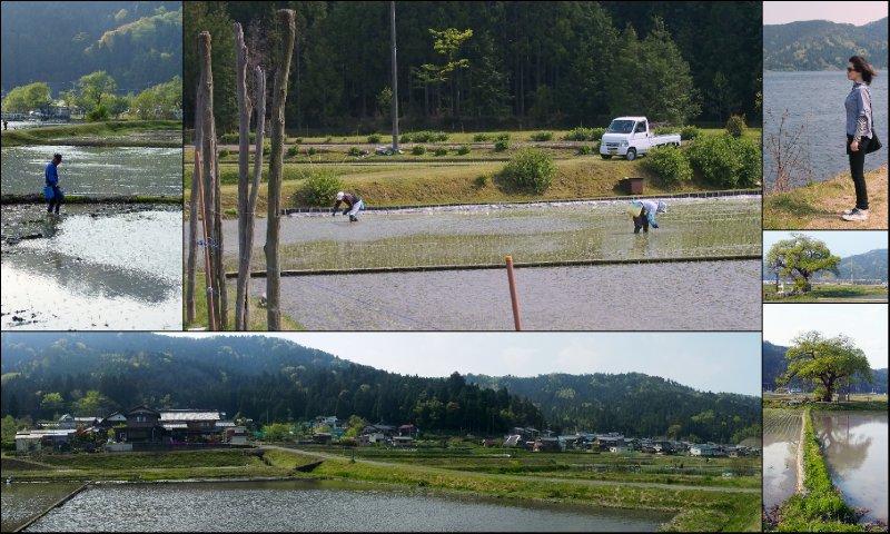 large_Lake_Yogo.jpg