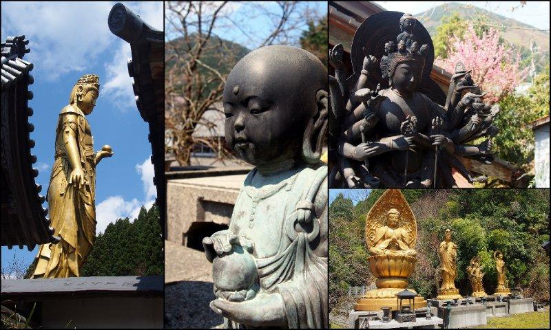 large_Local_Hanami3.jpg