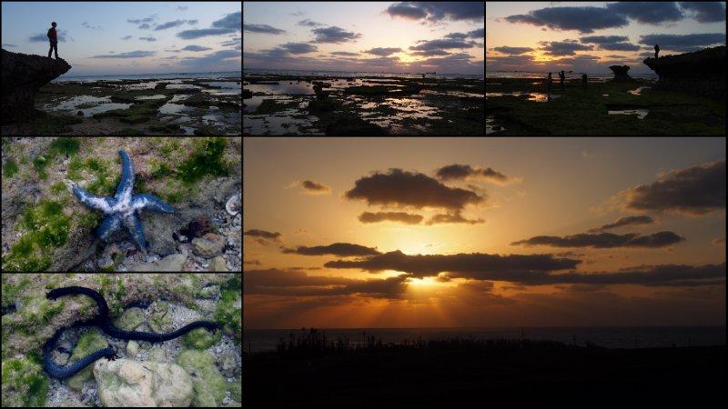 large_Okinawa21.jpg