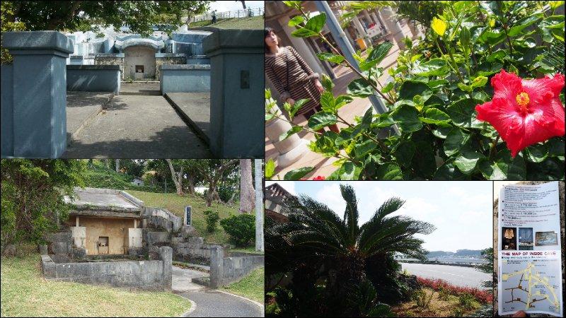 large_Okinawa30.jpg