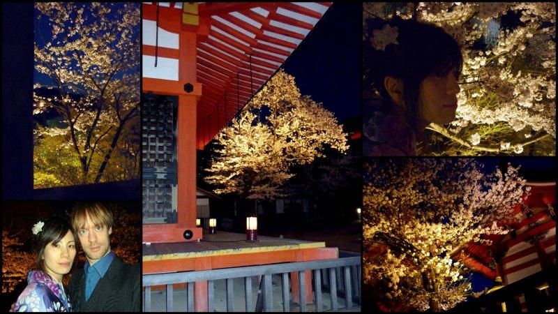 large_Osaka_and_..Hanami1.jpg