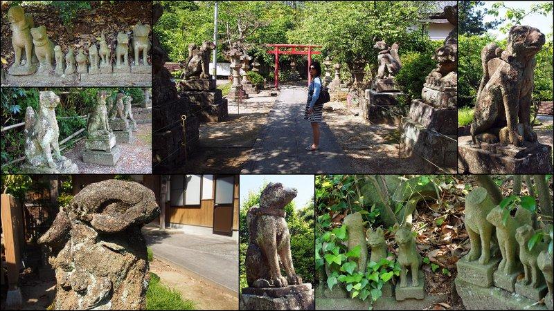 large_Totori___Shimane_Trip10.jpg