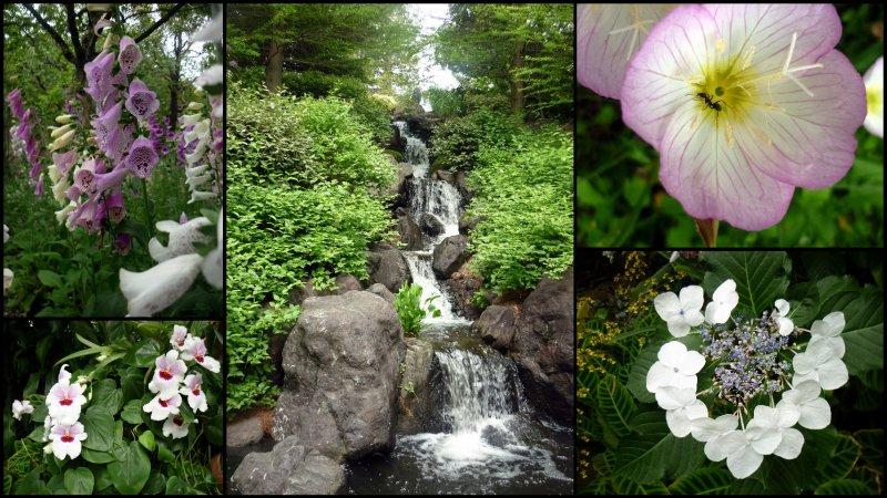 large_Uji_Botanic_Garden1.jpg