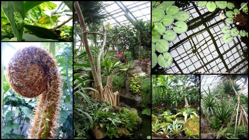 large_Uji_Botanic_Garden3.jpg