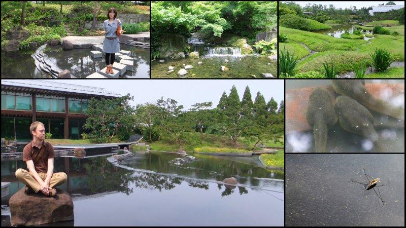 large_Umekouji_Park__Kyoto.jpg
