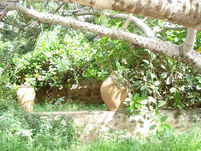 Andalusian_Garden.jpg
