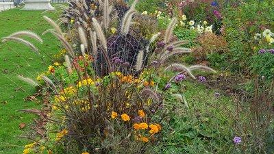octoberflowers.jpg