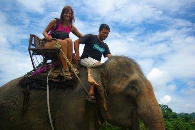 ze sedla slona