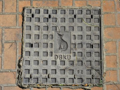 DSC02279.jpg