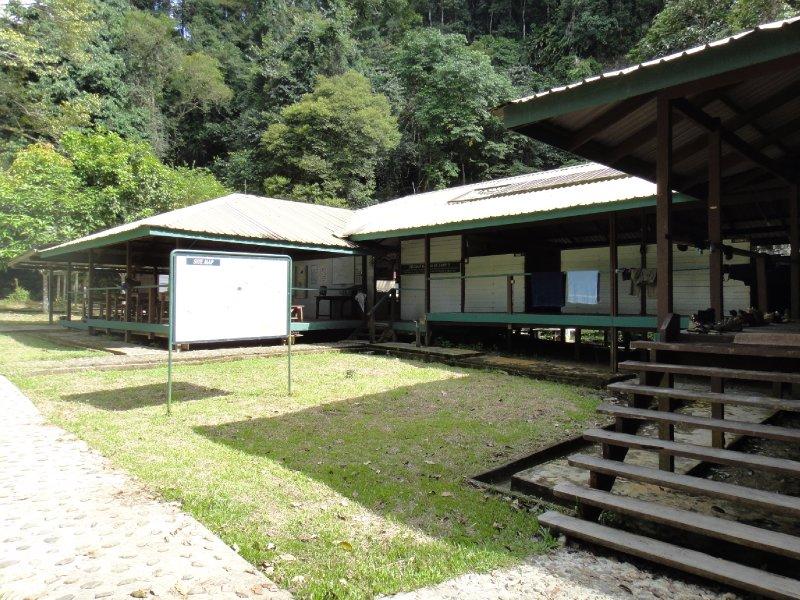 Camp5_-2