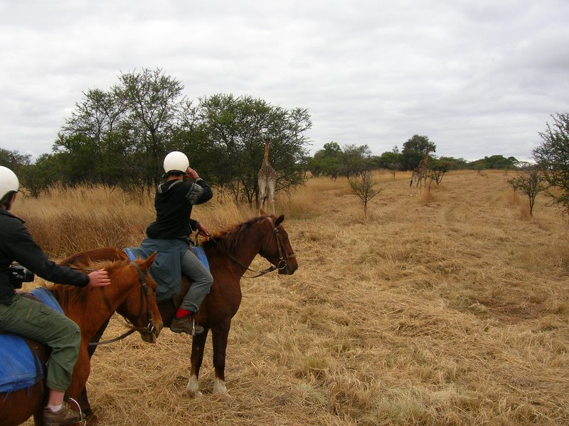 The coolest way to do a safari - on horse back!