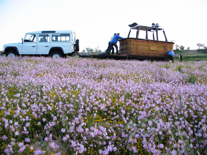 Balloon flight: freezing cold in a field of wild flowers