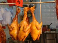 Chicken Anyone?