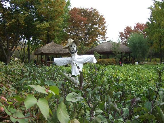 Scarecrow, South Korea