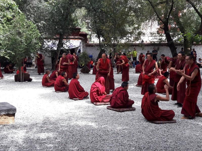 Monks debating, Sera monastery