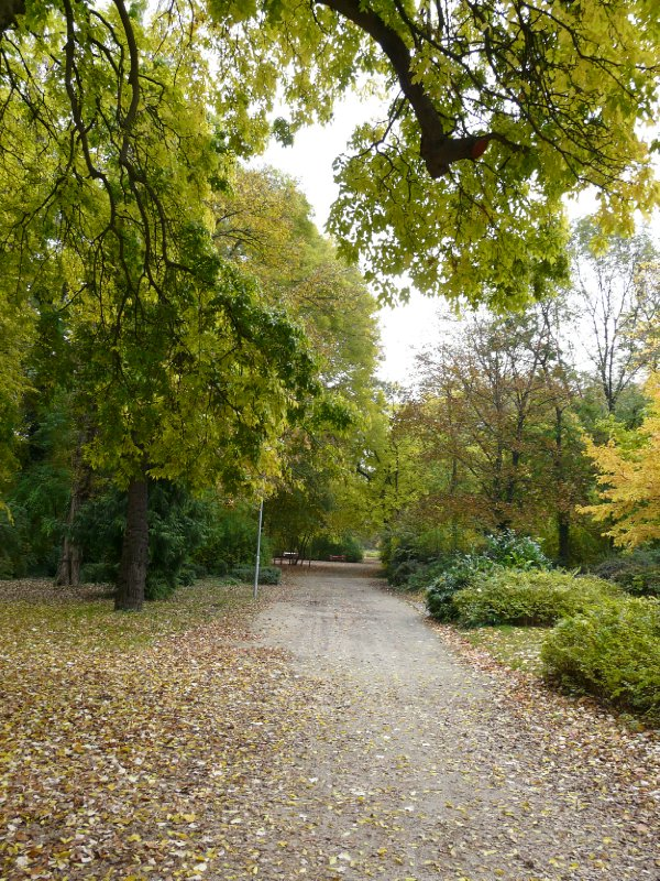 Margitsziget park in Autumn