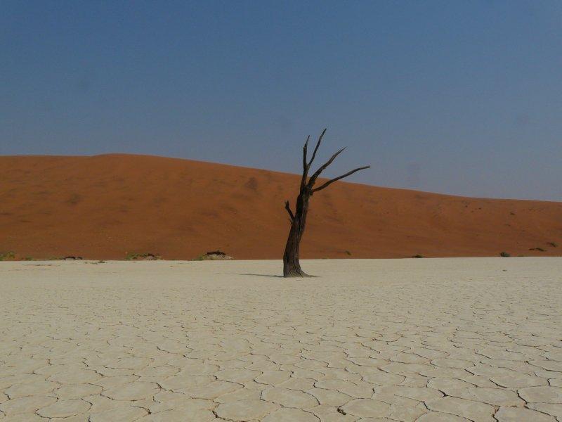 Deadvlei landscape