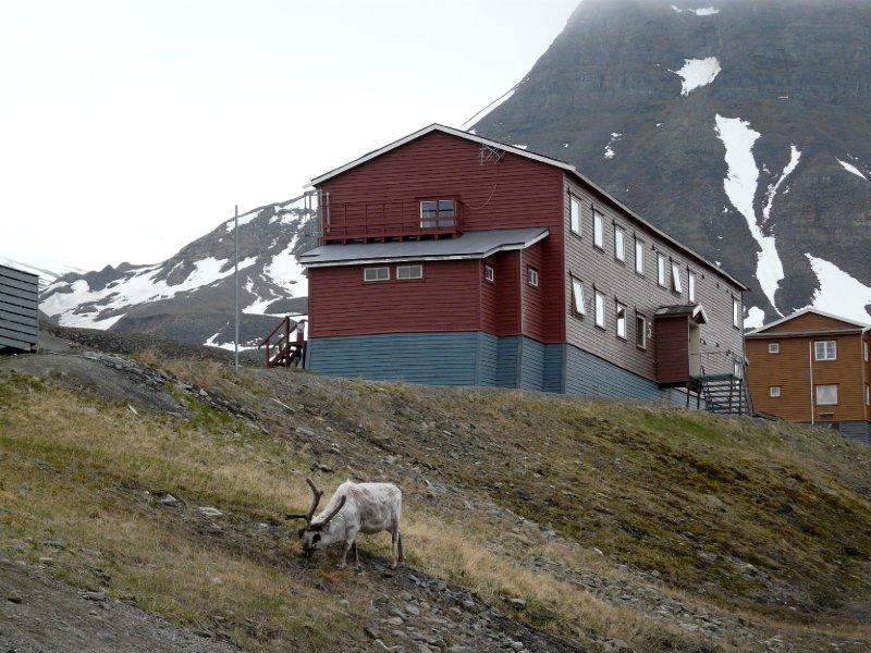 Spitsbergen Guesthouse accomodation
