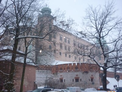 Wawel view 2