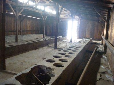 Latrine building camp II