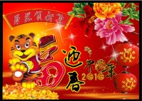 Happy new year of the Tiger