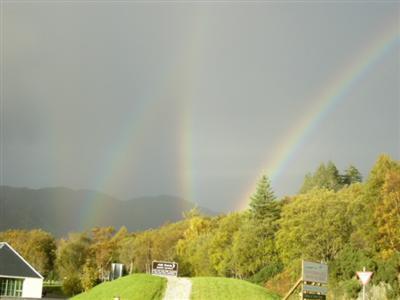 rainbow crazy..